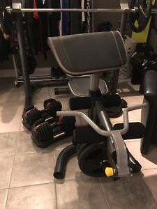 Olympic weights, Dumbbells, squat rack and bench! Mint