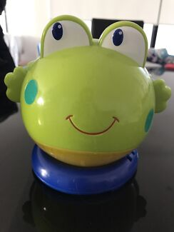 Night light and musical frog
