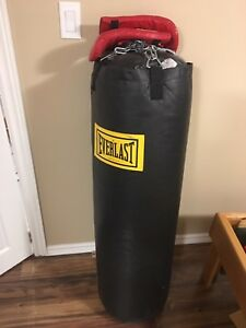 Everlast boxing bag in excellent condition with gloves