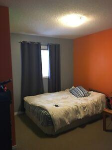 Grey and orange paint
