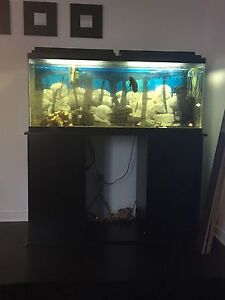 Aquarium 55 gallon