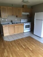 Right away available 2 bedrooms suit on ground level