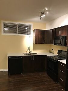 2 bedroom newly built basement apartment  for rent in airdrie