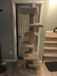 Cat stand, fully carpeted, stands about 6 feet tall