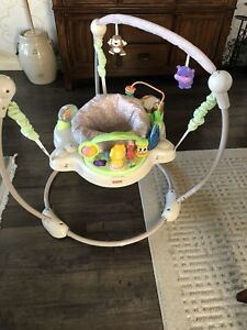 Fisher Price Bouncy Chair $20