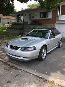 Mustang GT V8 4.6l 5 speed.