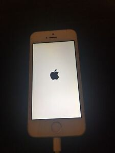 iPhone 5s white Melba Belconnen Area Preview