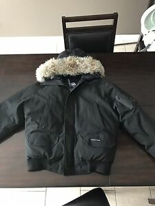 Canada goose bomber large