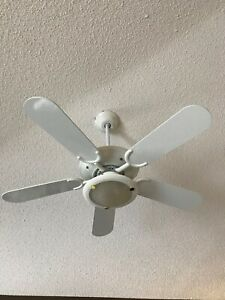 Ceiling fan / light combo