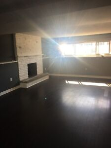 """""""Basement"""" Apartment in North End St Catharines Available Aug 1"""