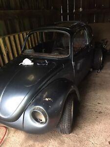 1973 VW Super Beetle Project