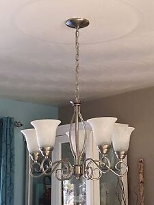 Chandelier and pendant light for sale