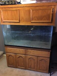 77 gallon tank with beautiful wood stand and hood.