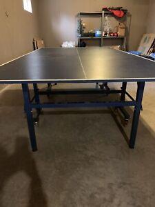Giant Dragon Ping Pong Table