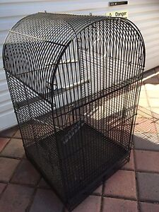 Metal bird cage St James Victoria Park Area Preview