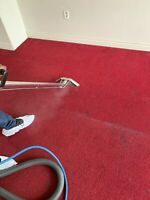 Xpres carpet cleaning