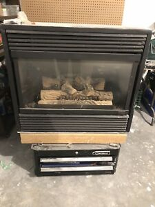 Gas Fireplace $200