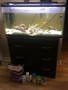 Saltwater aquarium and stand for sale