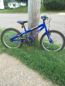 Norco Viper Kids Bike