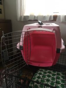 Small pink kennel