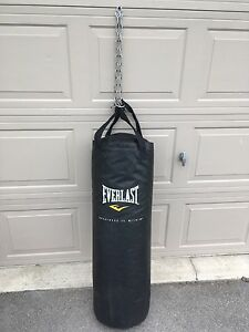 EverLast Punching Bag with Chain - Great Shape $80 wMMA Gloves
