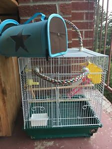 Small bird cage great for a budgie