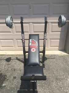 BENCH PRESS AND WEIGHTS PICKERING