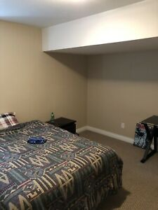 Walk out basement suite for rent