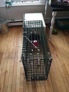 Rabbit Trap/Cage