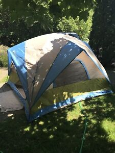 Woods 8x8 instand wedge dome tent