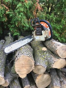 Tree removal- land cleaning