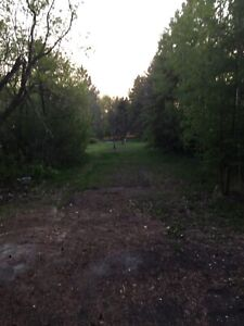 Beautiful, private RV spot for rent in Parkland County