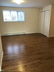 Beautiful spacious 2 bedroom apartment for rent in Torbay