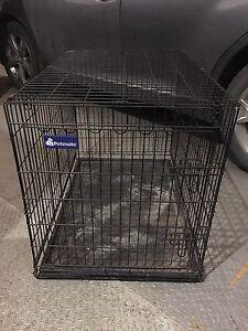 Dog kennel for large dog