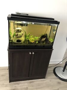 Aquarium 29gallons Tall equipée