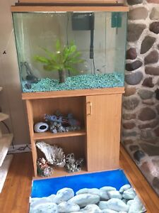 Fish tank- stand - accessories