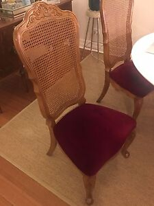 French Louis dining chairs with velvet seats. Bentleigh Glen Eira Area Preview
