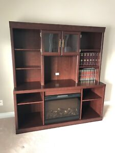 Fireplace / Entertainment Unit / Bookshelf