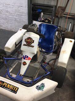 Go kart with 100s engine