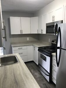 Newly Renovated 2 Bedroom Downtown! May 1st   December Sublet!