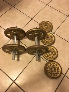 VINTAGE WEIDER WEIGHT PLATES/BAR
