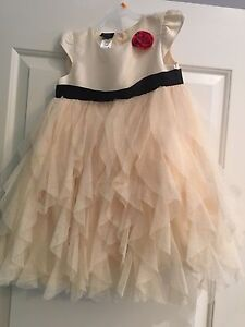 Size 4t Holiday Dress
