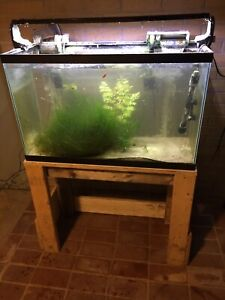 29 gal fish tank, stand, filter, heater, light and fish