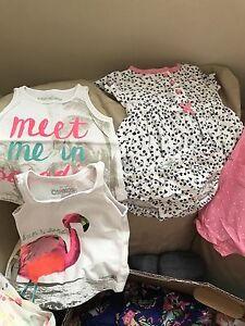 Baby Girls 3-6 month summer clothing lot