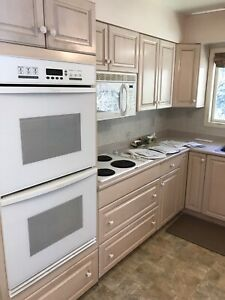 Appliances double stove, stove top, dishwasher sink, microwave