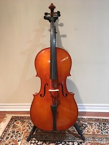 2013 Eastman Cello