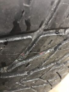 255/40/17 Radial GT Tires