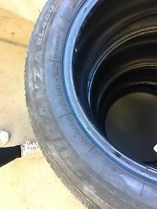 Bridgestone 205/55/R16 All-Seasons (2 tires)
