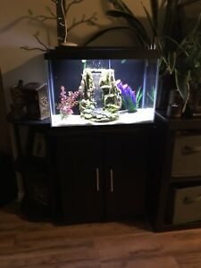 NEW tank, stand, remote lights, Ehiem canister filter waterfall