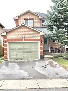 3 Bedroom Unit • All Inclusive • Fully Reno'd • With Backyard